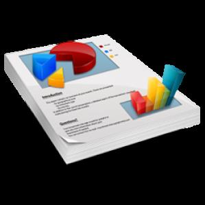 Gere relatórios financeiros personalizados